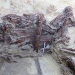 Paroi en bois bien conservée-1©pôle archéologique/CD02